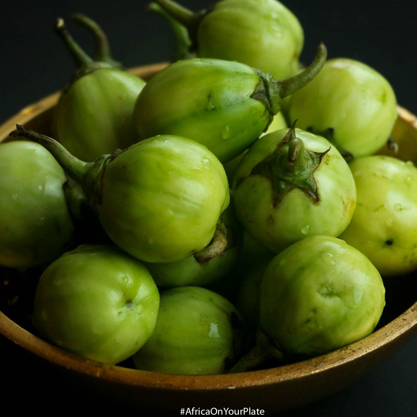 African-Eggplant-GardenEgg